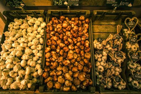 Garlics on display at The Garlic Farm