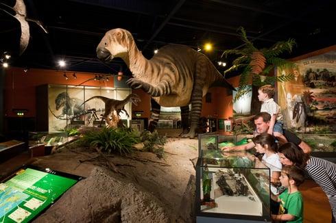 Inside Dinosaur Isle Museum